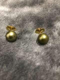 13mm Pistachio Colour South Sea Pearl Earrings in 14k YG Setting😍