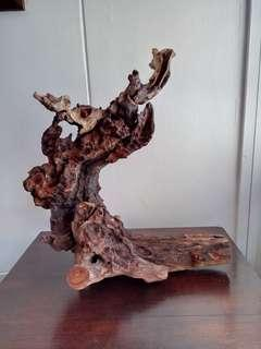 Display Wood