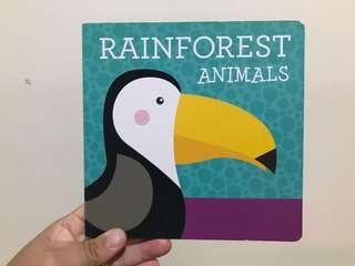 Rainforest Animals Boardbook BBW