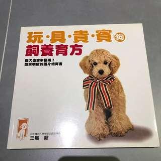 玩具貴賓狗 飼養方法