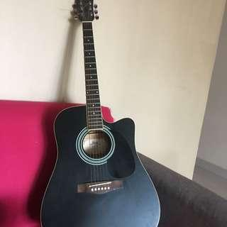 Fina acoustic