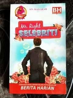 Buku PTS One Novel Ain Maisarah Mr. Right Selebriti
