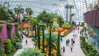Garden by the bay $18.5 adult