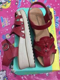 Wedges crocodile ori