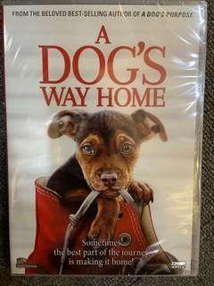🚚 A Dog's Way Home