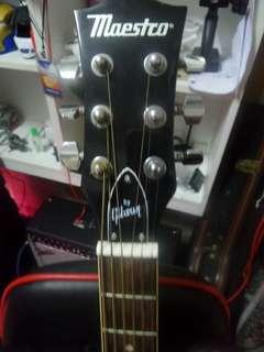 Acoustic Guitar gibson maeastro