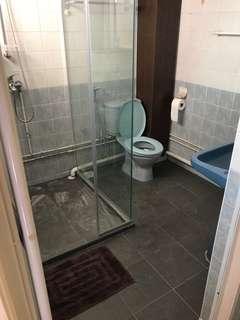 Overlay toilet floor tiles and shower screen