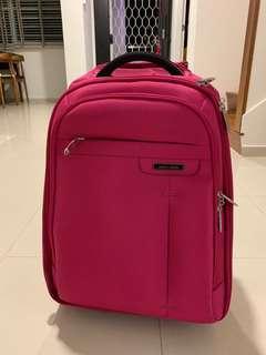 🚚 Small luggage backpack bag