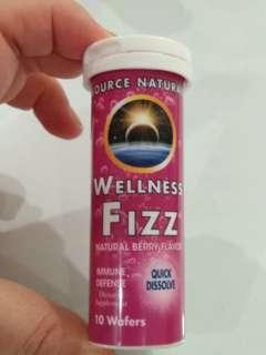 🚚 Brand New And Sealed Source Naturals Wellness Fizz