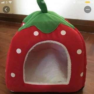 士多啤梨 草莓 狗屋 狗窩