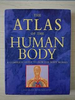 Atlas Of The Human Body (hardcover)