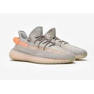 US9.5 Adidas Yeezy Boost 350 TRUE FORM