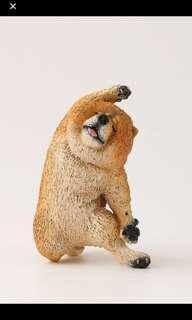 Animal Life狗舞蹈大師 Dancing Dog 扭蛋 鬆獅狗