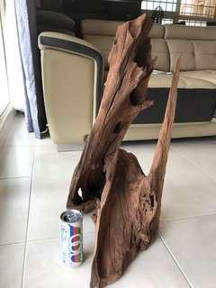 Big Driftwood (24 inch)