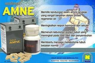 NATURAL ANME Original Produk NASA obat herbal untuk penggemuk badan