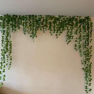 🚚 Drape leaves 10m