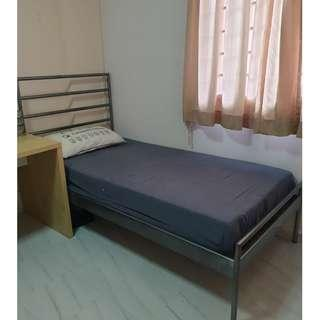 For Female..Nice Common room for Rent (Bishan)