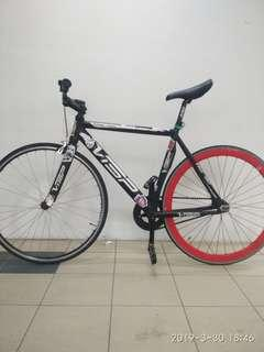 Visp Fixed Gear