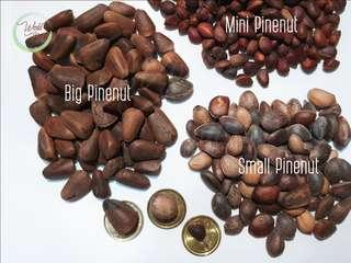 Raw Shelled Pinenuts (3 sizes)