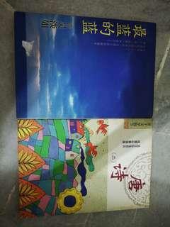 Mandarin novel