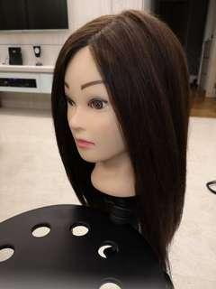 Hair Brown Color Dummy for Hairdo Practice with stand