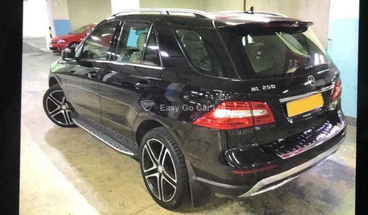 Mercedes-Benz ML250 BLUETEC 2014