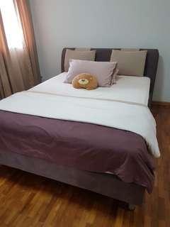 Queen Bed Frame and Mattress