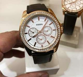 Original fossil wato BQ3383