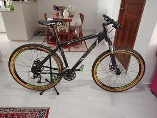 Polygon Xtrada MTB
