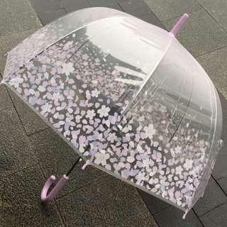 韓國入口~~ 櫻花雨傘