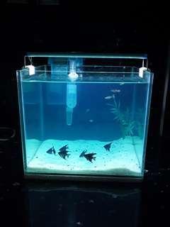 Aquarium fullset size M