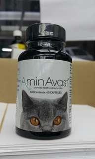 長期現貨 美國 AminAvast 胺腎 腎衰竭 腎臟保健 腎 貓 cat kidney failure renal