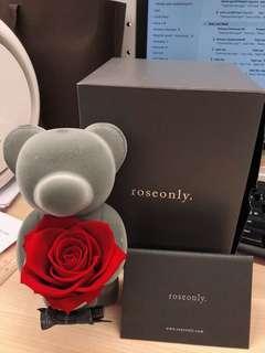 Rose only 永生花
