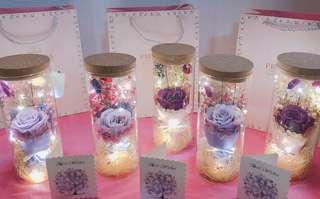 🚚 Led Rose Jar