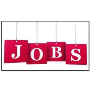 Personal Assistant (Part Time/Full Time)