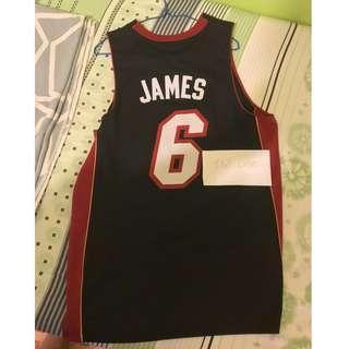 熱火 #6 James Size M