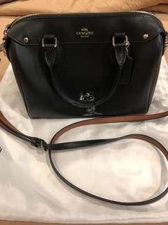 Snoopy Coach Handbag