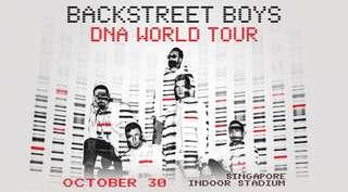 🚚 2 x CAT 1 BACKSTREET BOYS DNA 2019