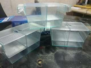 AA 魚B繁殖盒 (Size: L)