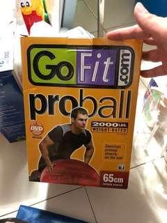 Gofit Pro Ball 65cm