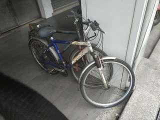 🚚 脚踏車