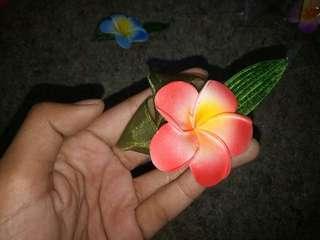 Bross bunga jepun