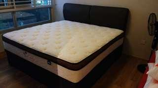 Dreamland latex mattress