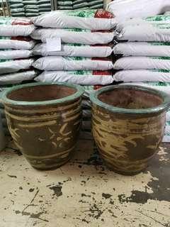 🚚 Dragon style pot