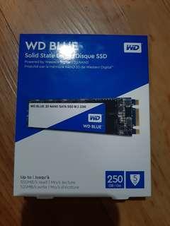 WD Blue SSD M.2 250GB
