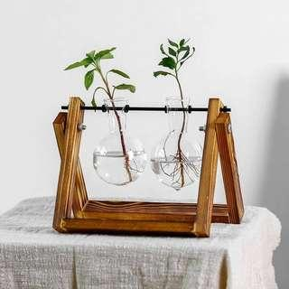 Air Plant Display Glass Vase/Jar/Holder
