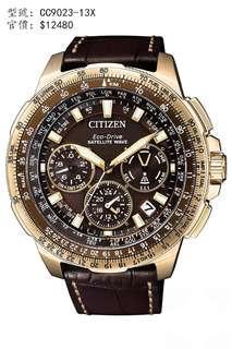 CITIZEN Watch 手錶 CC9023-13X