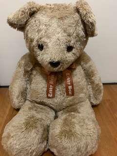 🚚 大隻泰迪熊