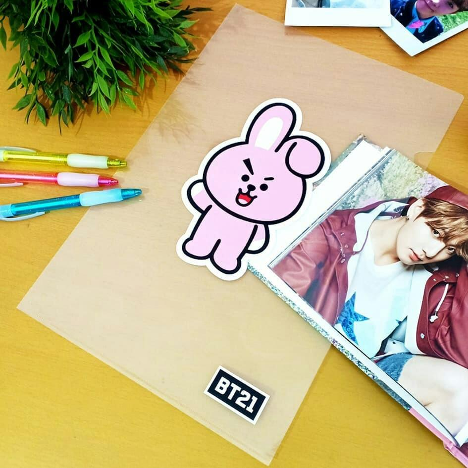BT21 UNOFFICIAL CLEAR FOLDER