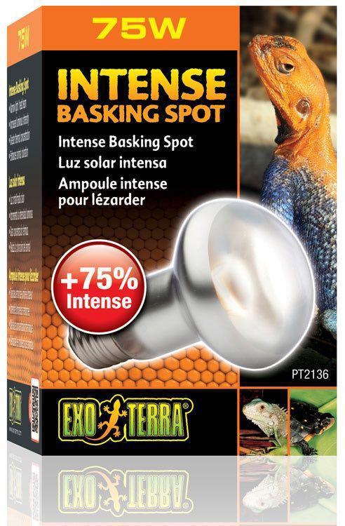 EXO TERRA Heat Bulb